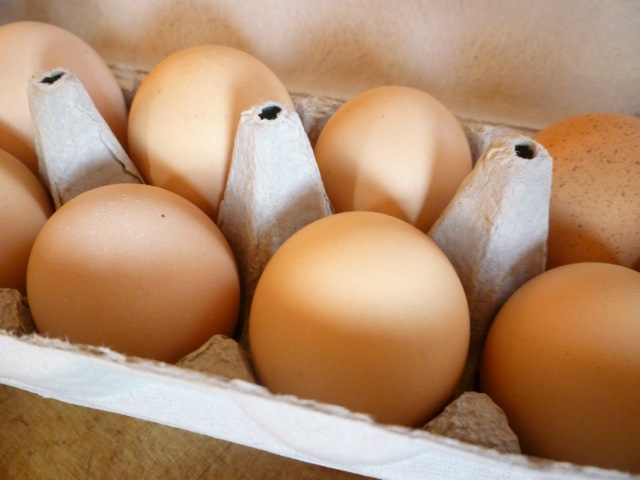 Fresh local eggs - bike tours italy
