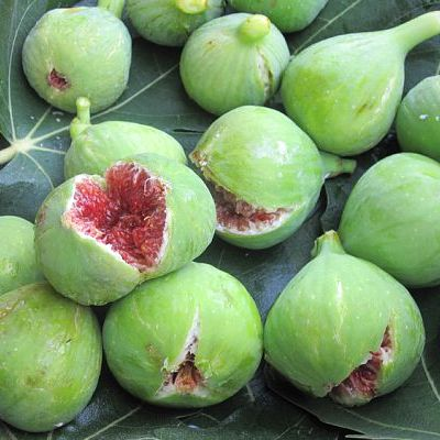 juicy figs square bike tours italy italiaoutdoors food and wine