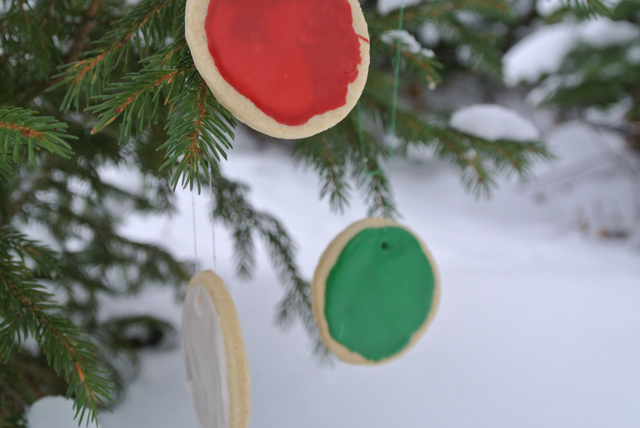 cookies in tree 1 ski holidays dolomites italiaoutdoors food and wine
