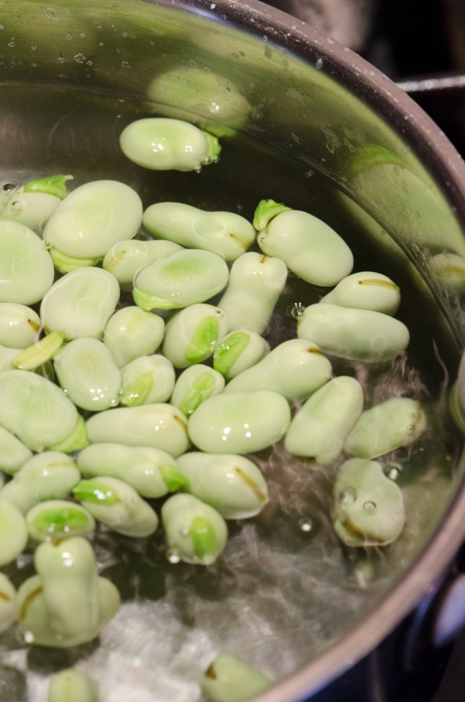 blanching fava beans bike tours umbria italiaoutdoors food and wine
