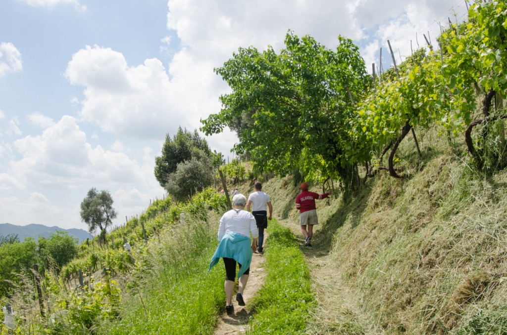 walk uphill bike tours italy italiaoutdoors food and wine