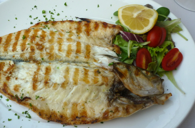 lake fish garda bike tours italy italiaoutdoors food and wine