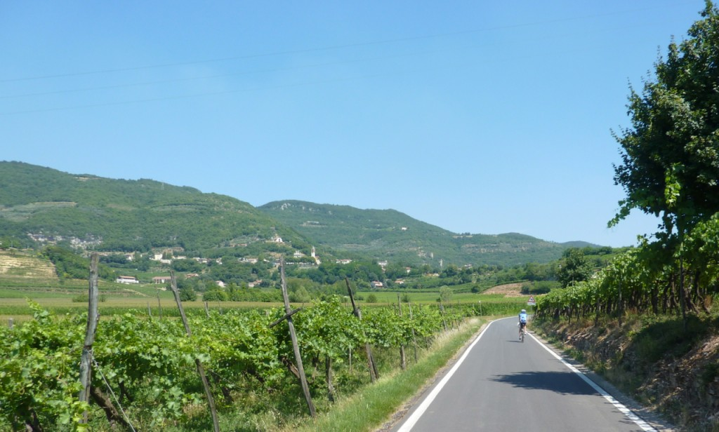 cycling thru vineyards bike wine tours italy italiaoutdoors food and wine