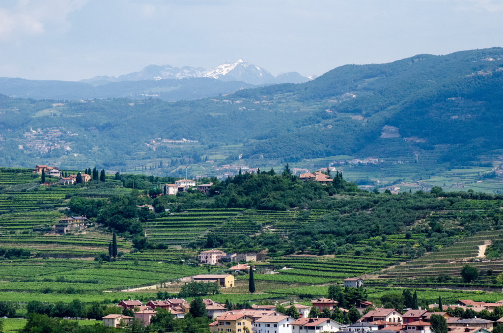 valpolicella view custom bike tours italy
