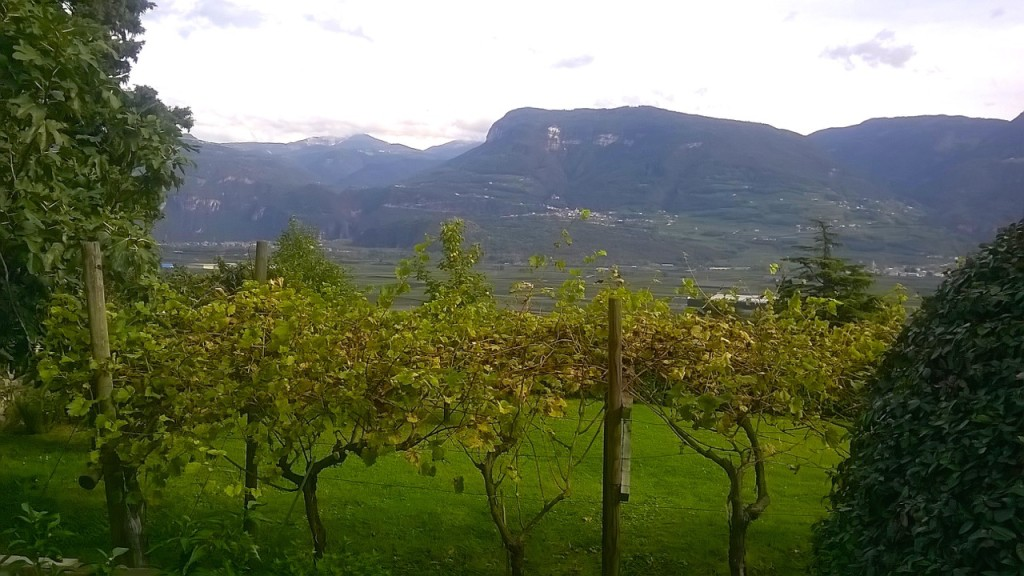 sudtirol-wine-road-cycling-tours-italy