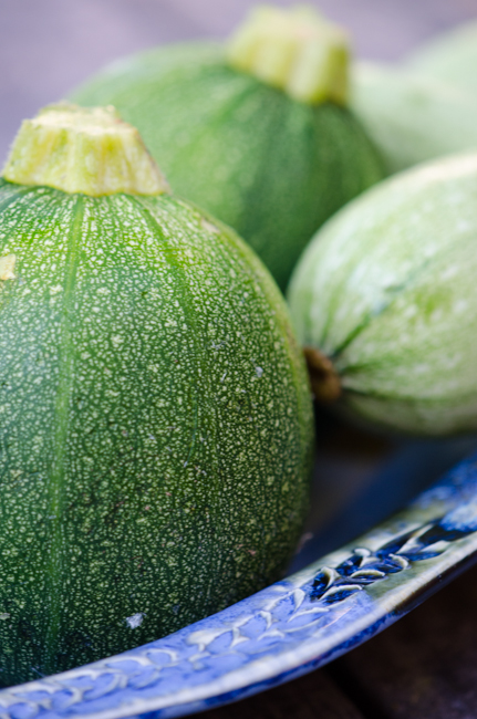 round-zucchini-cycling-tours-italy