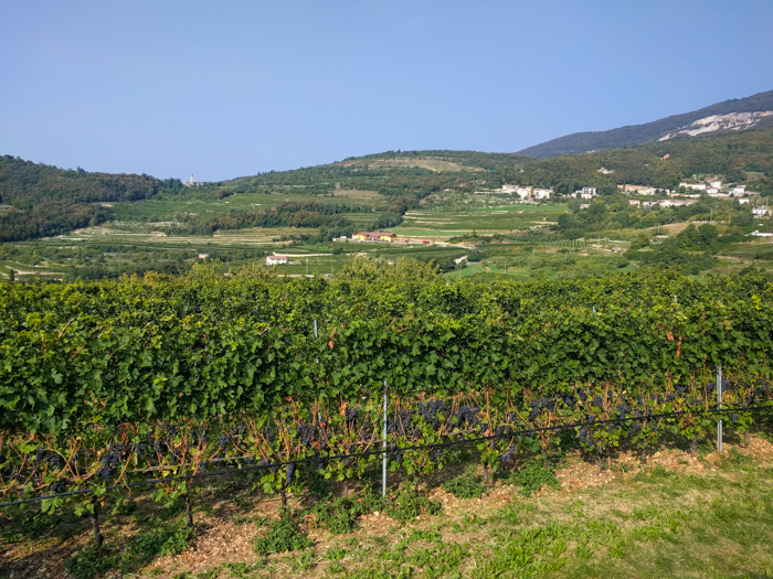 accordini-view-private-italy-walking-tours