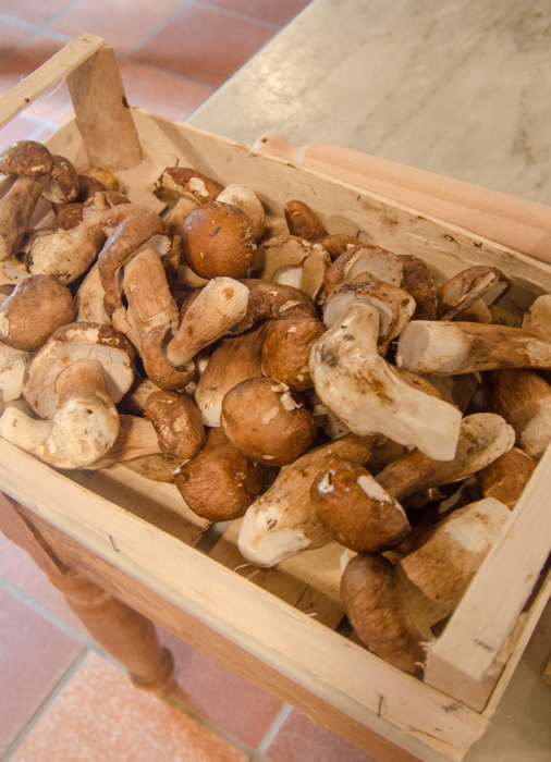 cooking-class-porcini-walking-tour-italy