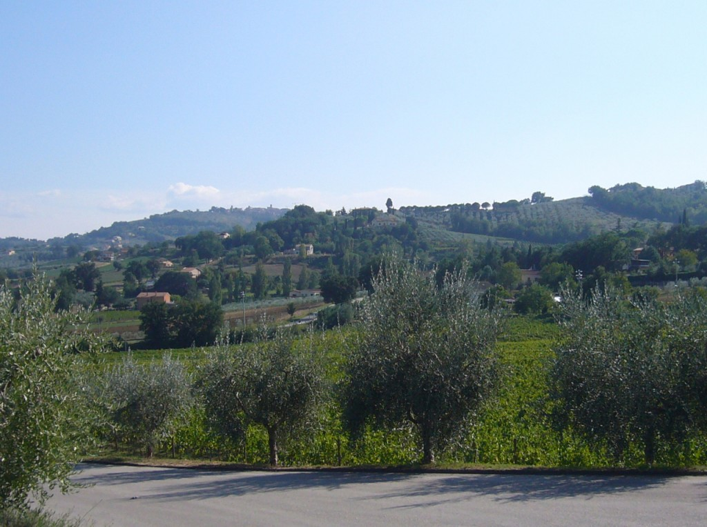 vineyards in umbria wine bike tours italy italiaoutdoors food and wine