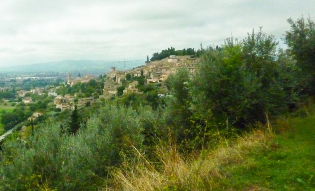 bibenda assisi view of spello private bike tours umbria italiaoutdoors food and wine