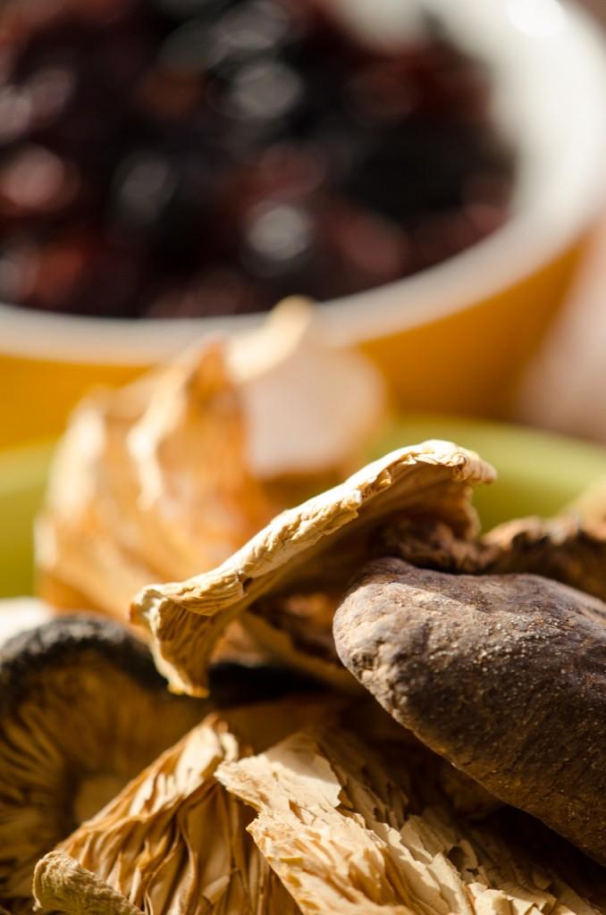 mushrooms frutti di bosco bike tours italy italiaoutdoors food and wine
