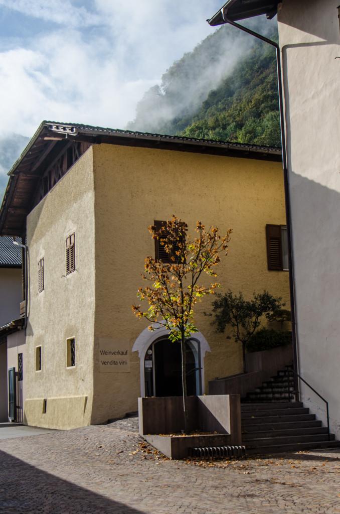 nals margreid cantina cycling tours sudtirol
