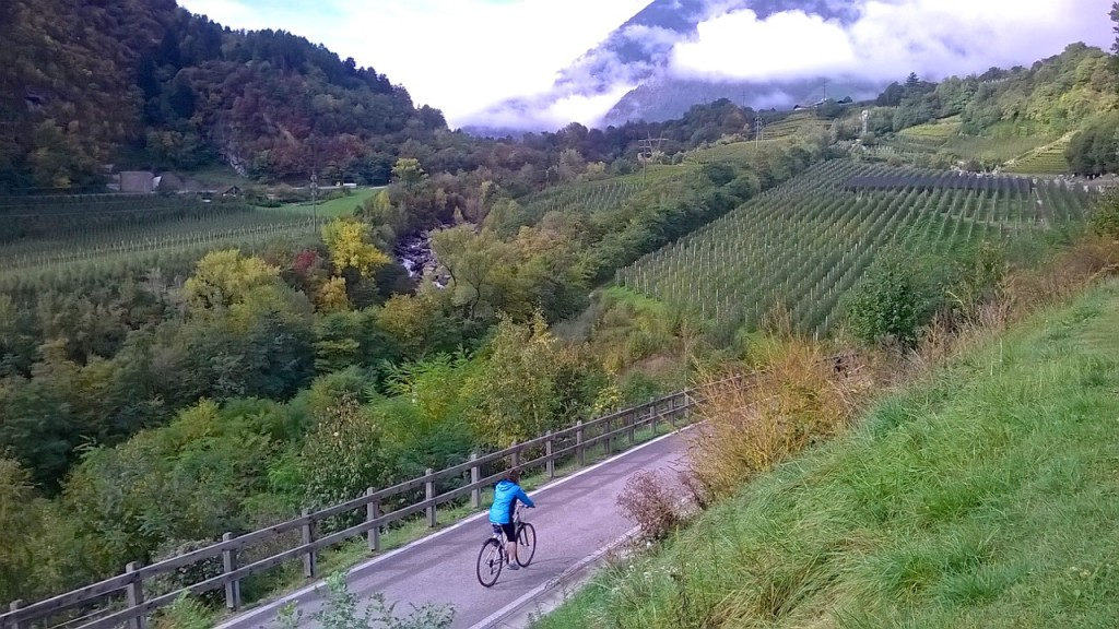 val-venosta-cycling-private-tours-italy