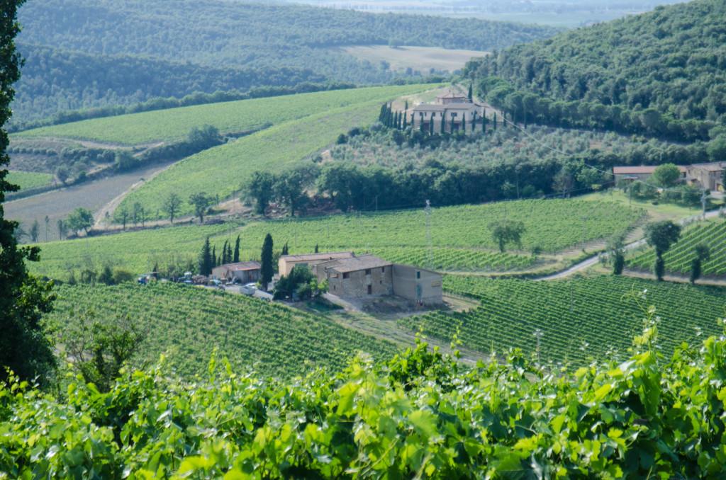 bruschetta-tuscany-view-private-tours