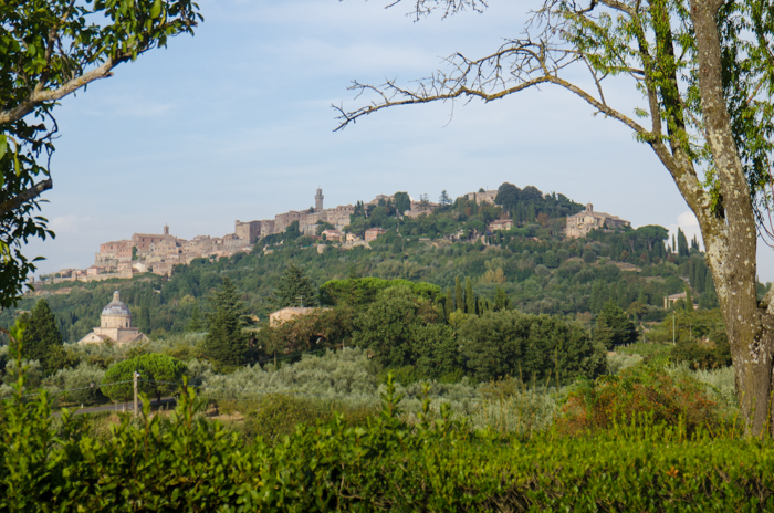 montepulciano-view-custom-walking-tours-tuscany