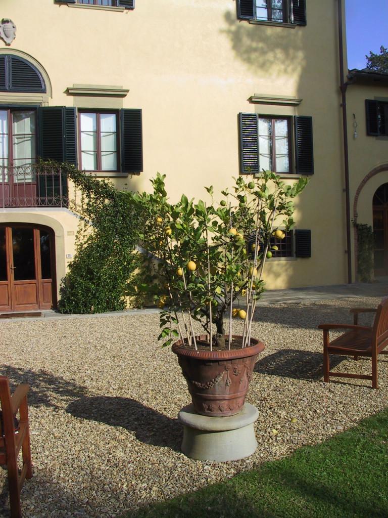 antinori-estate-cycling-tours-tuscany