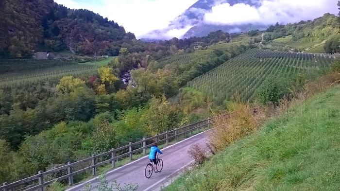 val-venosta-path-private-bike-tours-italy