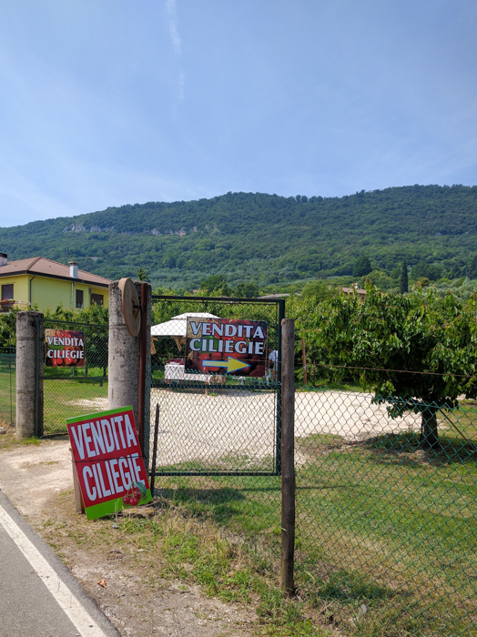 vendita-italy-private-cycling-tours