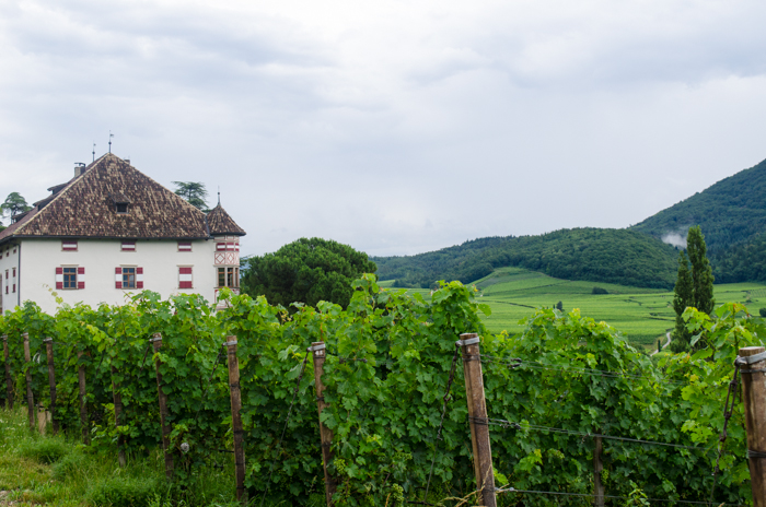 castel-ringberg-private-walking-tours-italy