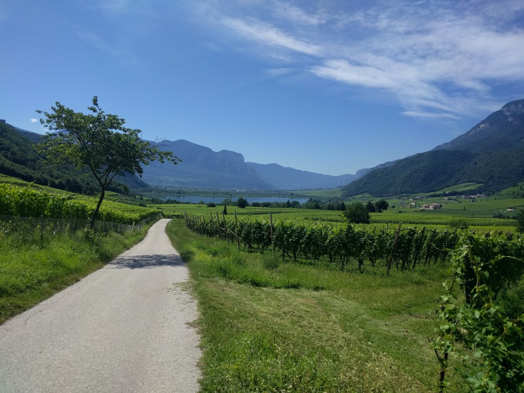 vineyards-cycling-tour-italy